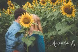 sunflower field photoshoot sunflower photography pinterest