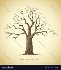 tree icon royalty free vector image vectorstock