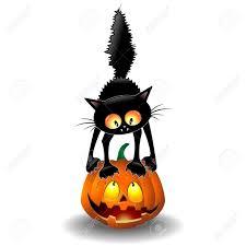 scared halloween cats u2013 halloween wizard