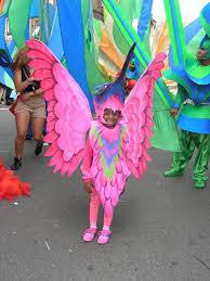 pink hummingbird carnival costumes carnaval pinterest