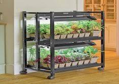 indoor vegetable garden kit home design