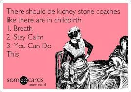 Kidney Stones Meme - kidney stones craft beer a tale of one city the ice cream diaries