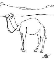 free online camel colouring page
