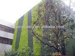 vertical green wall system planters greenwall planters interior