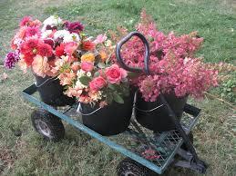 farm fresh flowers farm fresh locally grown flowers for walla walla weddings and