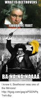 Beethoven Meme - what is beethovens favourite fruit banana naaaa i knew it beethoven