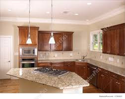 picture of luxury kitchen with island stove