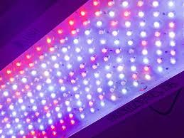 led marijuana grow lights growing marijuana using led grow lights