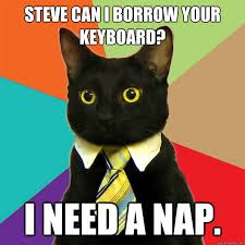 Meme Keyboard - steve can i borrow your keyboard cat meme cat planet cat planet