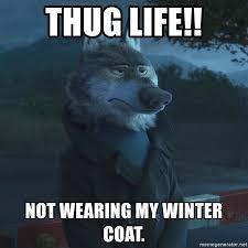 Wolf Meme Generator - thug life not wearing my winter coat zootopia wolf meme