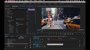 photo light pro premiere pro how it works luts for premiere pro youtube