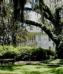 22 best my monticello florida images on pinterest southern charm