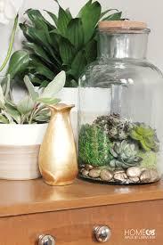 faux moss u0026 succulent terrarium home made by carmona