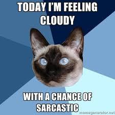 Working Cat Meme - working 皓 chronic illness cat