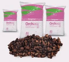 orchid bark grow award winning orchids orchiata reduce repot