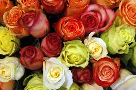 order flowers online s day 2015 how to order flowers online so they get