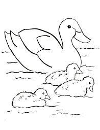 images duck characters coloring donald colouring pages