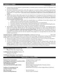 Board Of Directors Resume Sample by Art Resume Example Design Director In Fine Arts U0026 Architecture