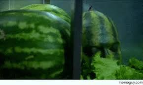 Watermelon Meme - watermelon superhero meme guy