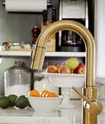brass kitchen faucet awesome newport brass kitchen faucet interior design