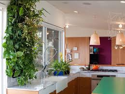 cuisine jardin jardin vertical intérieur et extérieur un vrai gain de place