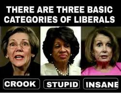 Meme Categories - there are three basic categories of liberals crook stupid insane