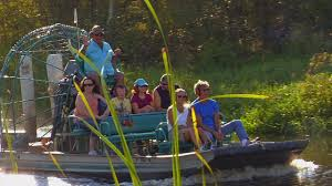 fan boat tours florida airboats alligators airboat tours lake trafford immokalee fl