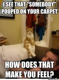 Therapist Meme - therapist cat by sammiee meme center