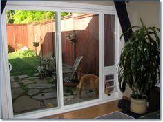 Vinyl Patio Pet Door Jeld Wen Pre Hung Entry Door With Factory Built In Pet Door