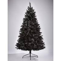 6ft black regal fir tree co uk