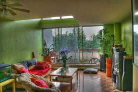 living room indoor plant decor transitional design in home