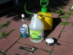 white vinegar as organic weed killer
