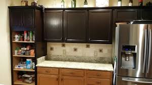 kitchen cabinets paint them or replace doors talk of the villages