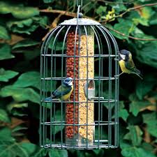 Backyard Birds Store by Two In One Bird Feeder National Geographic Store