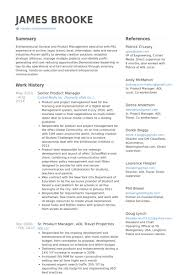 Product Management Resume Samples by Senior Project Manager Resume Template Billybullock Us