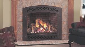 fireplace fresh gas fireplace log inserts home interior design