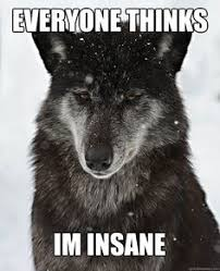 Wolf Memes - i made an insanity wolf meme in minecraft advice animals