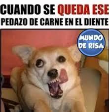 Memes En Espa Ol - memes chistes memes en español image 4513855 by loren on favim com