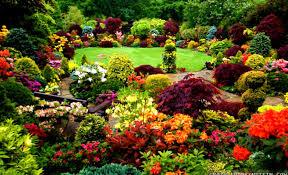 Beauty Garde 28 Beauty Garde Beautiful Garden Flowers Wallpaper Images