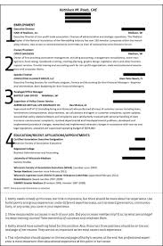Non Profit Executive Director Resume What Is Institutional Racism Essay Pay To Do Cheap Critical