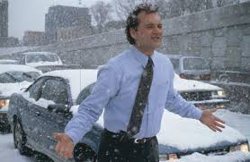 groundhog day 1993 rotten tomatoes