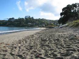 red beach whangaparaoa auckland linku2 hibiscus coast new