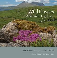 plants native to scotland wild flowers of the north highlands of scotland amazon co uk ken