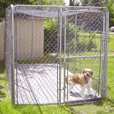 outdoor dog kennel flooring flooring designs five great types of kennel flooring for dogs animal hub