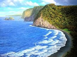 black sand beach big island enjoy some of the fine big island of hawaii beaches while staying at