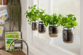 helpful sugru tips for creating an indoor garden sugru
