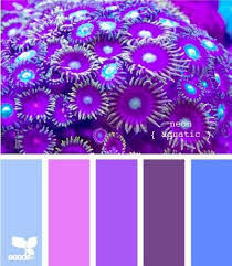 4818 best couleurs images on pinterest colors color pallets and