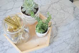 best house plants ideas for succulents the best house plants nesting with grace