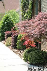 low maintenance gardens debbiedoos