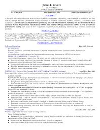 Resume Sample Executive by Inspire Summary And Technical Skills And Software Consulting Chef